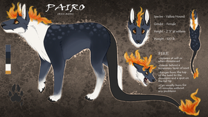 Pairo Reference Sheet by PAlRO