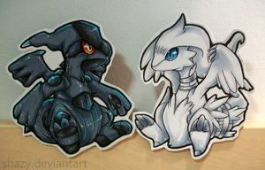 Zekrom and Reshiram by shazy