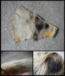 Spotted Hyena Fur by CabinetCuriosities