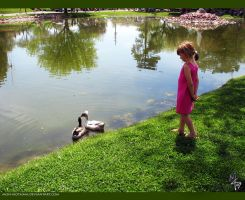 Girl and Ducks by mon-mothma