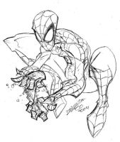 spidey_quick_sketch... by fco