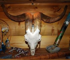Animal Skull 3 by Peace-of-Art by Peace-of-Art