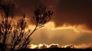 Sunset Landscape. by JepicGeorge24x