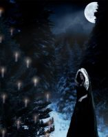 Yule Night by xrazorblade-beautyx