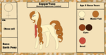 CopperTune {Reference Sheet+ Bio} by ScarletsFeed