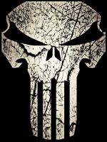The Punisher: War Zone by PsychosisEvermore