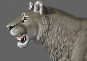 Cave lion profile by AnonymousLlama428