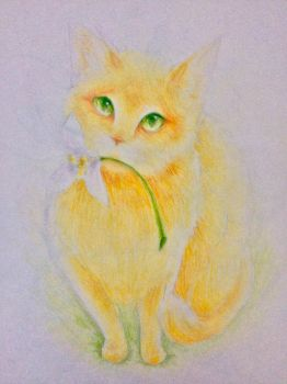 Snowdrop Cat by Leafwhisper44