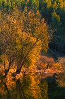 Autumn colors by gendosplace