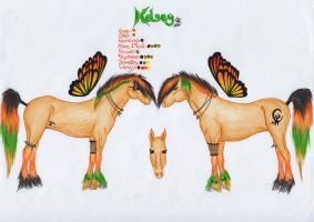 Kelsey Reference Sheet by TheShiranja
