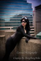 Catwoman on the rooftop by BangBangNeko