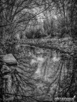 Reflections on a Still River BW by mjohanson