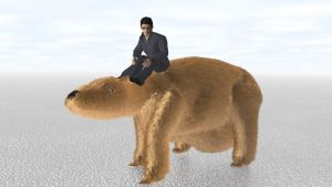 Man Riding Giant Wombat Again by ManyardButler