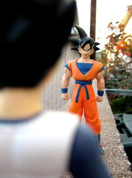 Vegeta and Goku . +1 by DBpictures