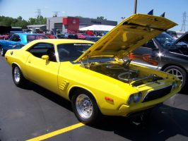 Yellow Muscle by PhotoDrive