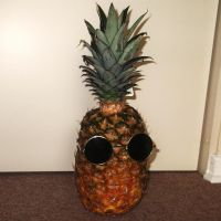 Pineapple Lennon I by TheWallProducciones
