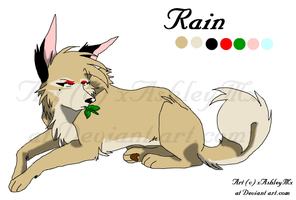 Rain referance sheet REDO by xAshleyMx