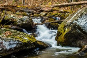 Natural Flowing Creek at Anna Ruby Falls by BKFILMS