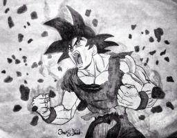 Dragon Ball Z Goku Transforms by OG7