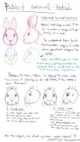 Rabbit drawing tutorial pt2 - Understand the Head by LadyFiszi
