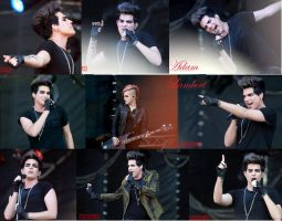 Adam Lambert Collage 2011 by biokma