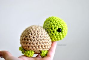 Lil Turtle by eriKaB05
