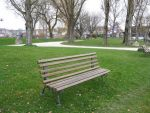 Bench in the park by Olgola