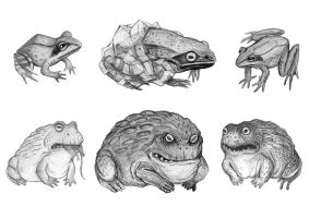 The Frozen Frog and The Killer Frog by V-L-A-D-I-M-I-R