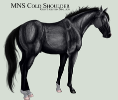 MNS Cold Shoulder by chaoticXinsane