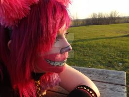 The Cheshire Cat #4 by xXxHeatherAnnxXx