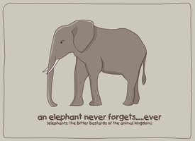 An Elephant Never Forgets by ROB0TH0USE