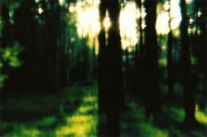 diana f+..dreamy forest by InjectedSmiles
