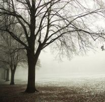Pea-souper park 3 by Dosulan