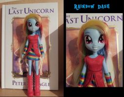 Equestria Girls - Rainbow Dash - customizied by CelestPapermoon