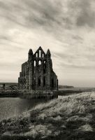 Whitby Abbey by Johnmckenna