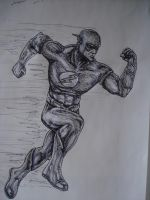 the flash by artkid01