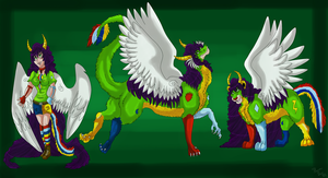 Dragon race ref 2013 by dragonrace