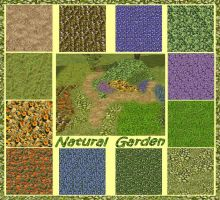 Natural Garden by allison731