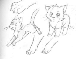 More Cat Sketches by StarlightWhispers