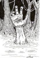 The Hand in the Water by lagatowolfwood