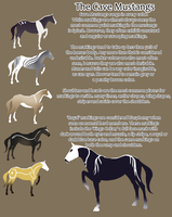 Cave Mustang Breed Sheet by Fargonon