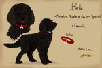 Comm: Belle Reference Sheet by MischievousRaven