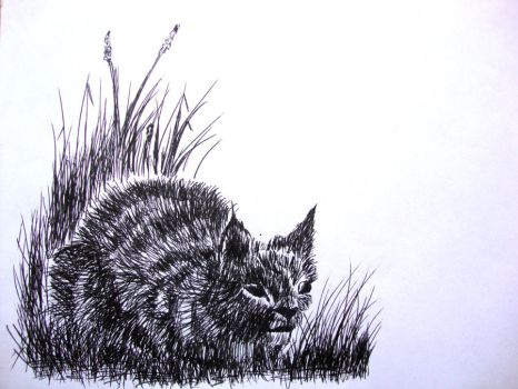 Ink Cat by phiea