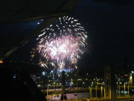 Fireworks over Pittsburgh by Rennon-the-Shaved