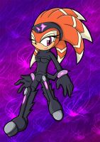 Shade the Echidna by DrDoomy