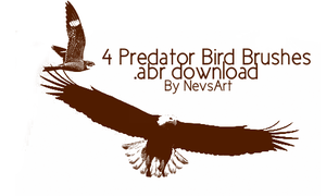 Predator Birds Brush Set by NevsArt