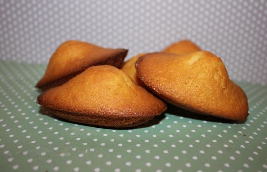 Madeleines by LesdelicesdeLucile