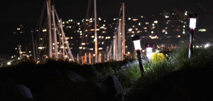 Yachts and Nightlights by TEDiLICIOUS