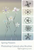 FREE Spring Flower Photoshop Brushes plus Cutouts by ibjennyjenny