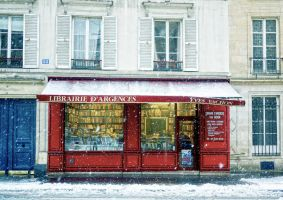 Librairie in the snow by annamarcella24